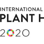 IYPH2020_Logo_Horizontal__EN